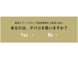 02_星野リゾートグループ 採用サイト-