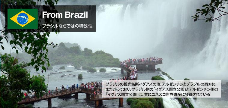 From Brazil (ブラジルならではの特殊性)トップ画像(写真は、ブラジル観光名所イグアスの滝。アルゼンチンとブラジルの両方にまたがっており、ブラジル側の「イグアス国立公園」とアルゼンチン側の「イグアス国立公園」は、ともにユネスコ世界遺産に登録されている。)